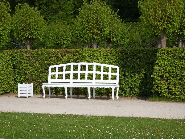 BENCH AT THE HEDGE